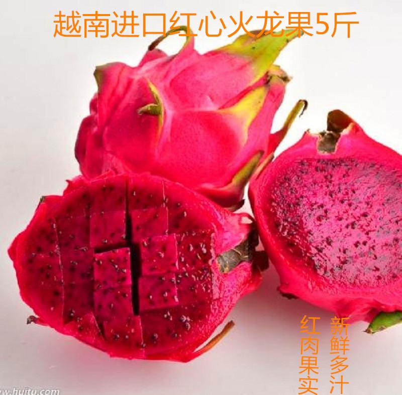 12-02新券现货红心5斤净重红肉当季火龙果