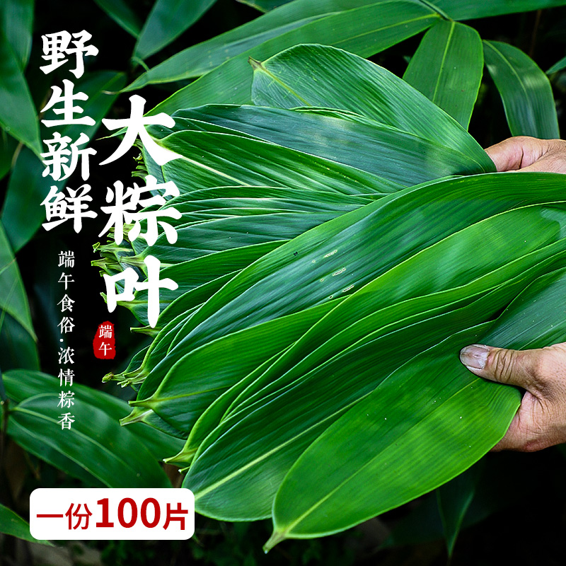 Enshi Changyou big zongzi leaves fresh large wild special RUOYE