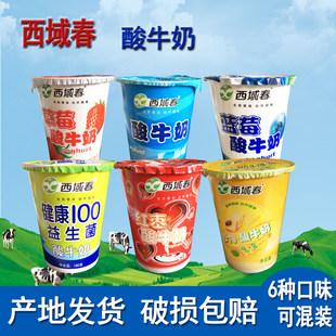 新疆特产西域春酸奶杯装6种口味混装12杯乳制品原味草莓蓝莓红枣