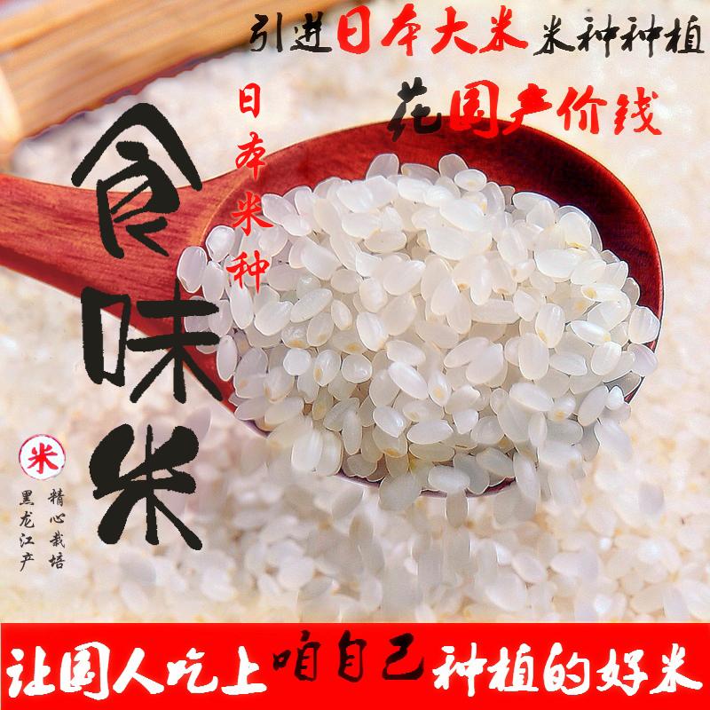 日韩料理寿司米食味大米1斤500g 黑龙江产非日本进口稻花长粒香米