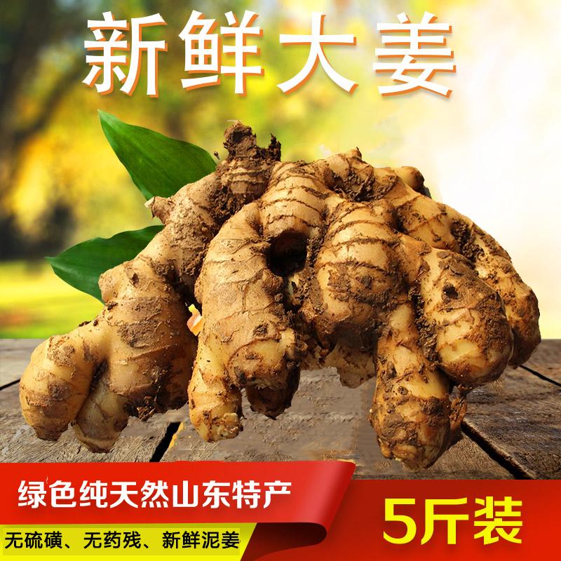 生姜老姜山东特产大姜新姜农家自种新鲜现挖五斤装绿色无硫无公害
