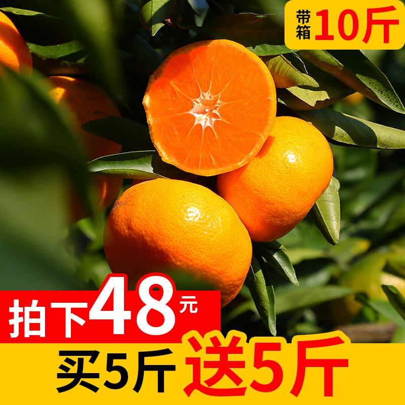 临海涌泉蜜桔当季新鲜水果橘子10斤早熟宫川黄岩无核柑橘现摘包邮