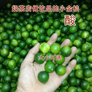 现货新鲜小青桔5斤1青金桔 酸金桔 奶茶水果 椰子鸡火锅蘸料配料