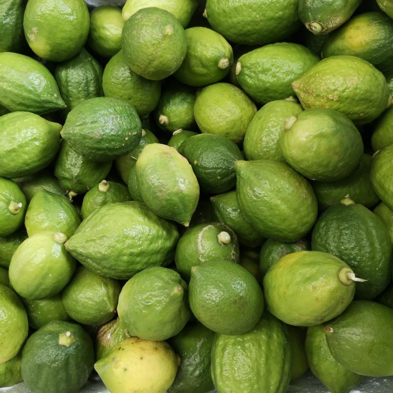广西本地柠檬4.5斤新鲜无籽香水不包邮