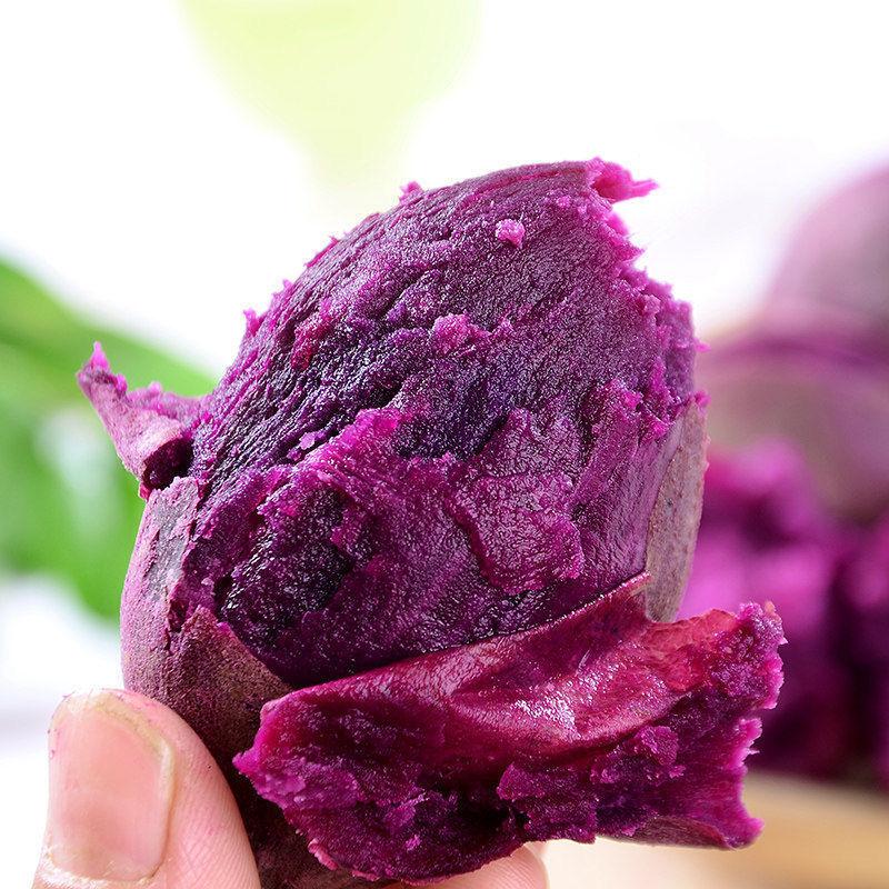 【超低价】紫薯新鲜价红薯新鲜蜜薯地瓜番薯板栗蔬菜