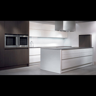 Germany imported top level cabinet level luxury apartments and villas with private clubhouse kitchen glass pin