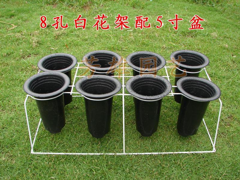 阳台铁艺花架/周转架/4寸、5寸兰花盆适用-8孔白色/黑色兰花架
