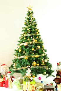 Green factory direct 150CM encryption Christmas tree 1.5 meters luxury encryption type Christmas tree bare tree sale