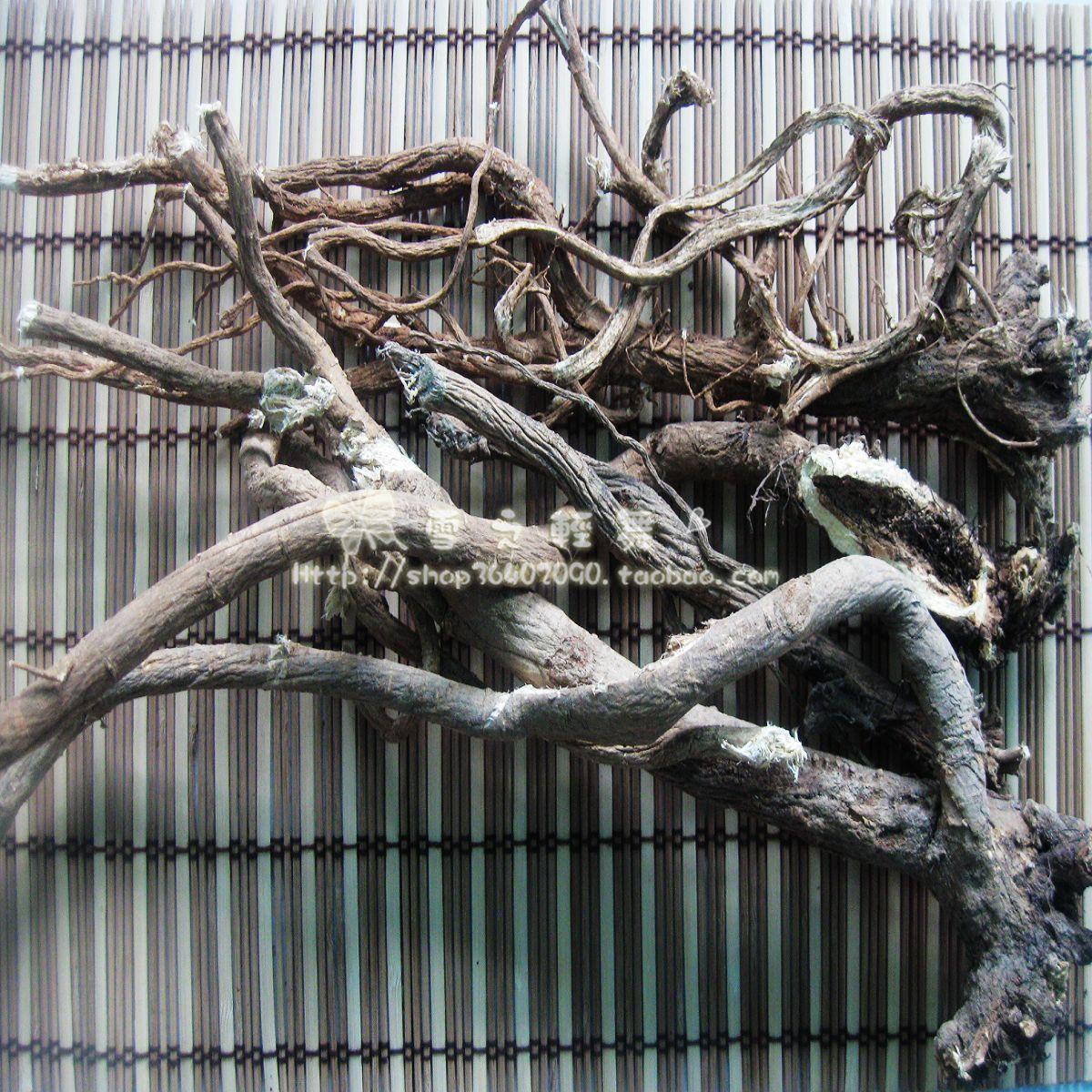 野生黄芪根北芪大兴安岭原始林地采挖散装黑龙江省其他土特产