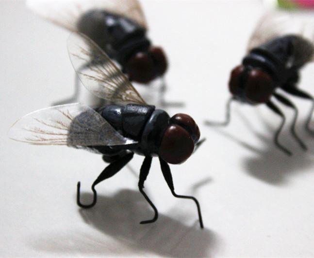 仿真昆虫 苍蝇 磁铁冰箱贴装饰品 场景布置 教育用品 整人玩具