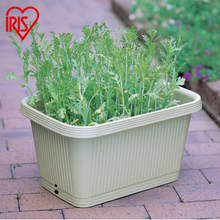 Alice IRIS Balcony Bonsai Vegetable Planting Pot