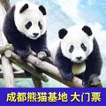 [大熊猫繁育研究基地-大门票]四川成都大熊猫基地门票 电子票