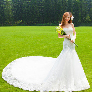 Door 2015 autumn and winter wedding dress wedding dress Korean Bra lace fishtail trailing princess wedding 936