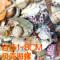 特价包邮超大海螺贝壳珊瑚套餐直销鱼缸地台家居装饰地中海打孔螺
