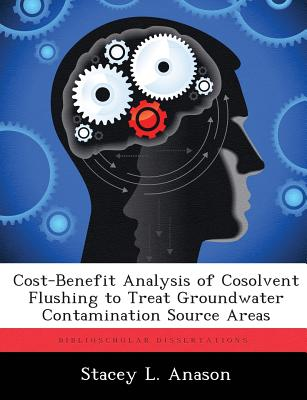 【预售】Cost-Benefit Analysis of Cosolvent Flushing to Tr...