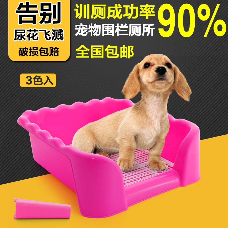 Собака туалет затем бассейн щенок туалет тедди туалет в небольших собак собака туалет собака моча бассейн собака затем затем туалет