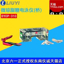 北京六一 DYCP-31C 微琼脂糖电泳仪(桥)