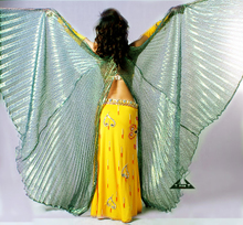 Special packages mailed belly dance accessories gold wing performance props magic Mosaic gold green leopard wings wings opening dance performance