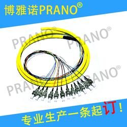 【博雅诺/PRANO】FC12芯1.5米单模束状尾纤光缆跳线电信级可定
