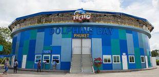 其他区接送服务大小同价 尼莫海豚馆豪华座门票 门票玩乐 B区域接