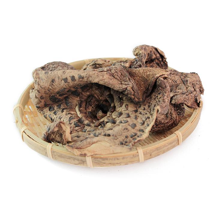 拾蘑菇 黑虎掌菌干货 老鹰菌獐子菌云南特产食用野生菌 50克包邮