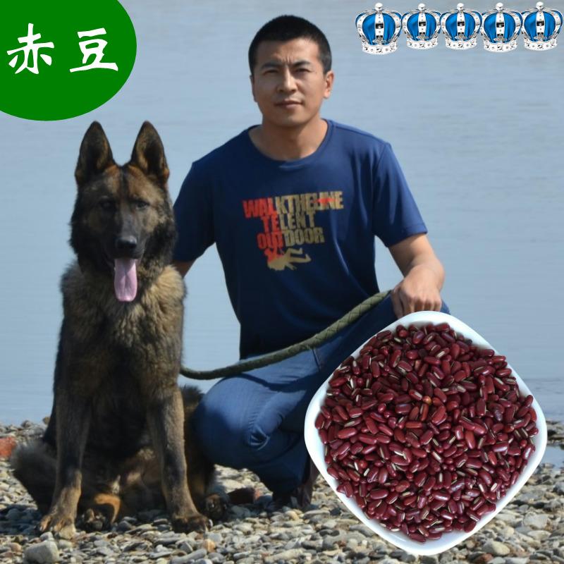 2019年新赤豆正宗东北红赤豆长粒赤小豆农家赤豆500克
