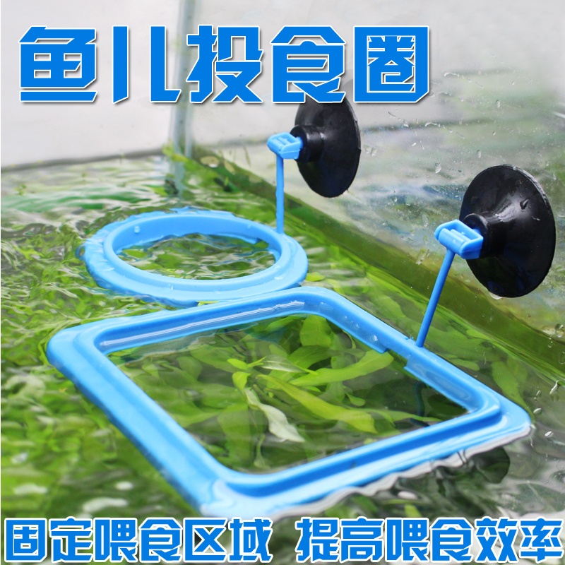 Тетя провинция сучжоу вода гонка рыба литье еда круг вода гонка коробка аквариум рыба еда рыба зерна рыба подача материал кормление круг литье подача круг кормление устройство