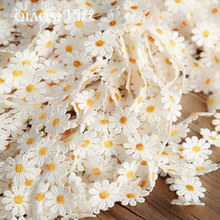 DIY garment accessories, coloured and delicate embroidery lace decoration material 2.5cm wide and small daisy lace.