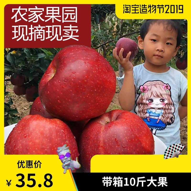 现摘新鲜粉面花牛红星苹果10斤带箱苹果香甜多汁粉面水果老人包邮