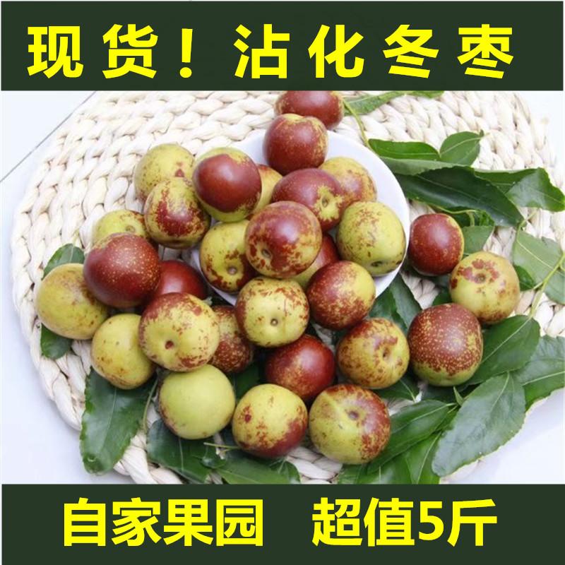 沾化冬枣新鲜5斤脆甜枣子孕妇水果当季整箱鲜枣青红枣陕西大荔10
