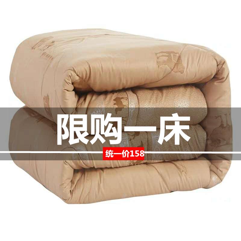 精品驼毛被100%纯驼绒被骆驼被子羊毛被春秋被夏凉被4/6斤夏薄款