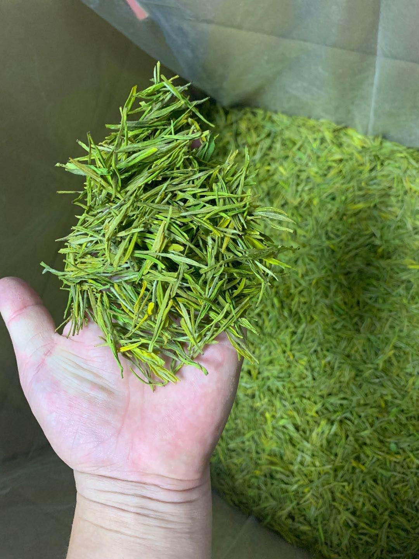 2020年新茶浙江安吉白茶雨前非特级高山散装黄金牙250克绿茶