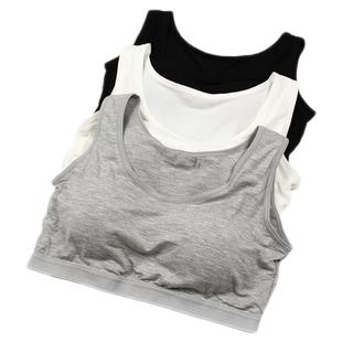 运动女士背心式无钢圈bra少女内衣