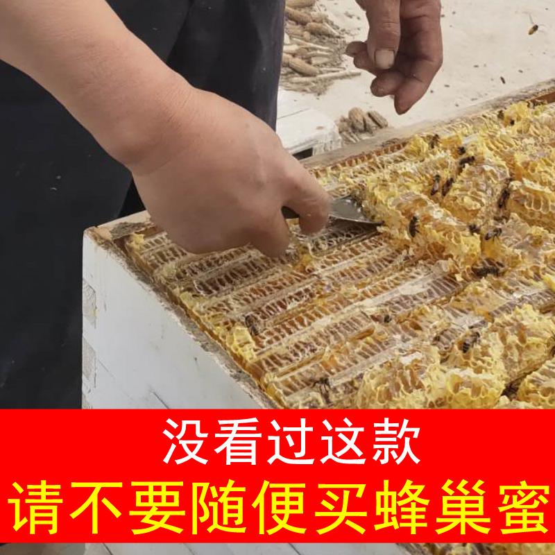 新疆蜂蜜纯正天然峰蜜蜂巢蜜嚼着吃野生蜂巢块百花蜜蜂窝蜜500克