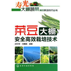 寿光大棚蔬菜高效栽培技术菜豆大棚