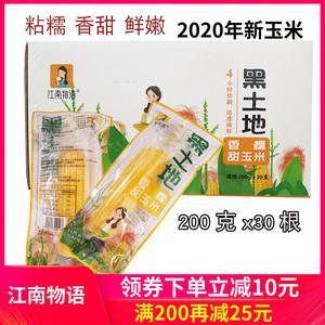 江南物语东北甜糯玉米棒200克*30根/箱 2020黑土地黄金玉米包邮