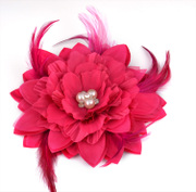 Good dancing beauty bride capitatum capitatum flower show dance headdress tipped bit feather flower