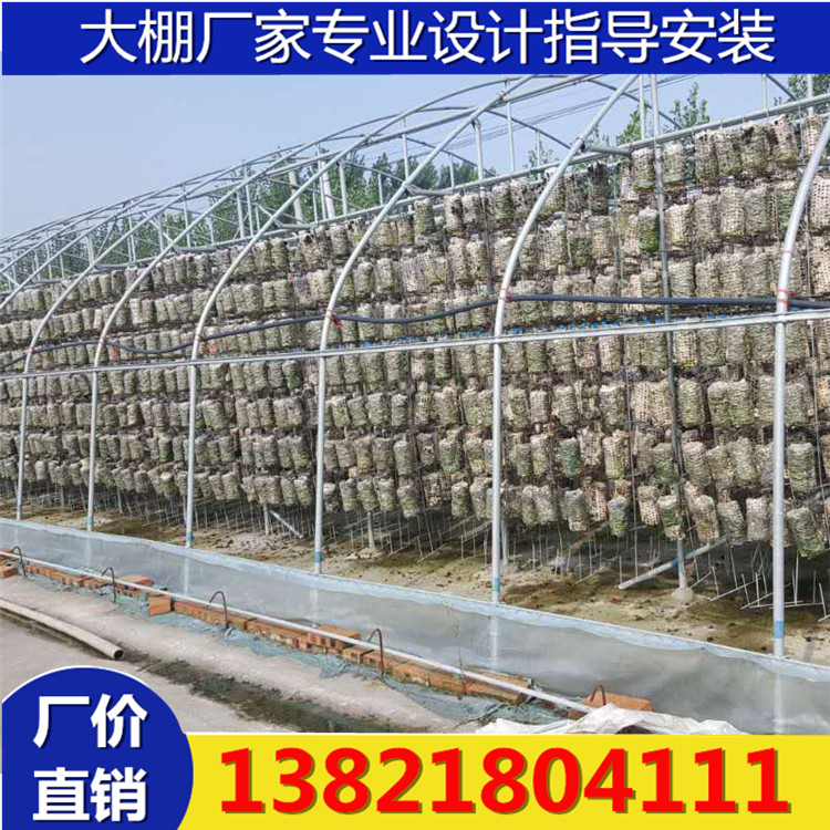 Auricularia auricula greenhouse skeleton 16 hanging pipe Auricularia auricula bag greenhouse steel frame hot-dip galvanized greenhouse steel pipe customized