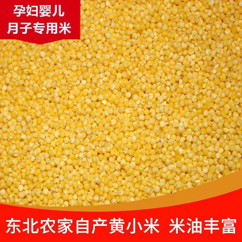 2020年新米/黄小米/小黄米/月子米/宝宝米/粥大米/五谷杂粮粗粮粥