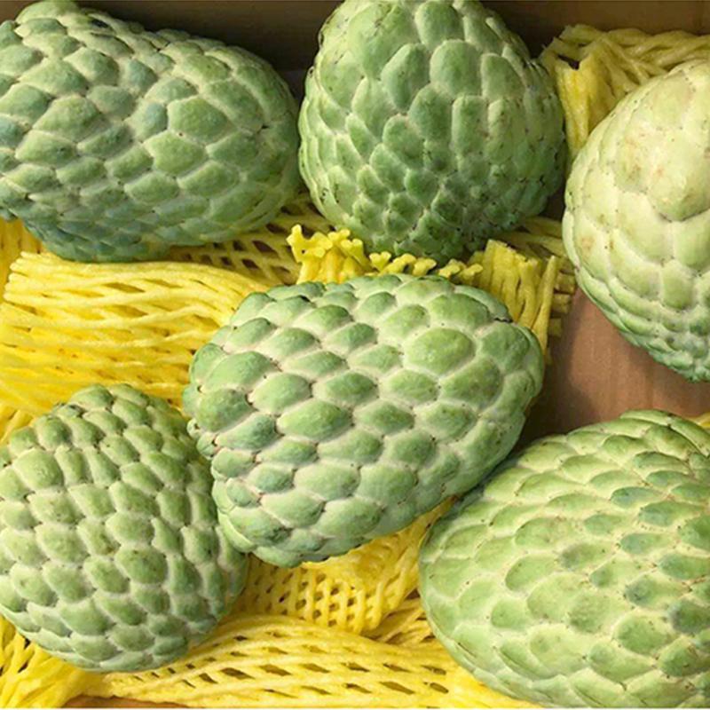 泰国释迦果牛奶番荔枝释迦佛头果当季时令新鲜水果3斤装包邮