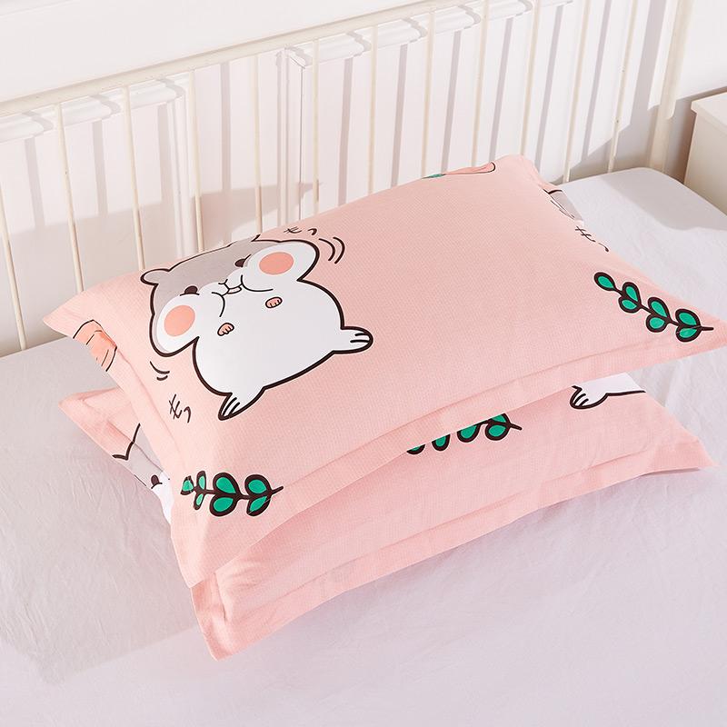 纯棉枕套一对装全棉枕头套40x60x40单人学生家用卡通枕芯套48*74