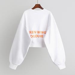 秋冬2020新款卫衣女短款韩版宽松高腰上衣长袖外套ins潮加绒加厚
