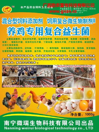 养鸡专用复合益生菌畜牧养殖物资除臭氨气鸡场生态养殖饲料添加剂