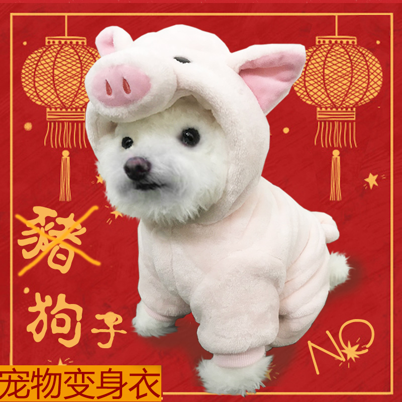 Pet dog cute glutinous piglets changing into clothes