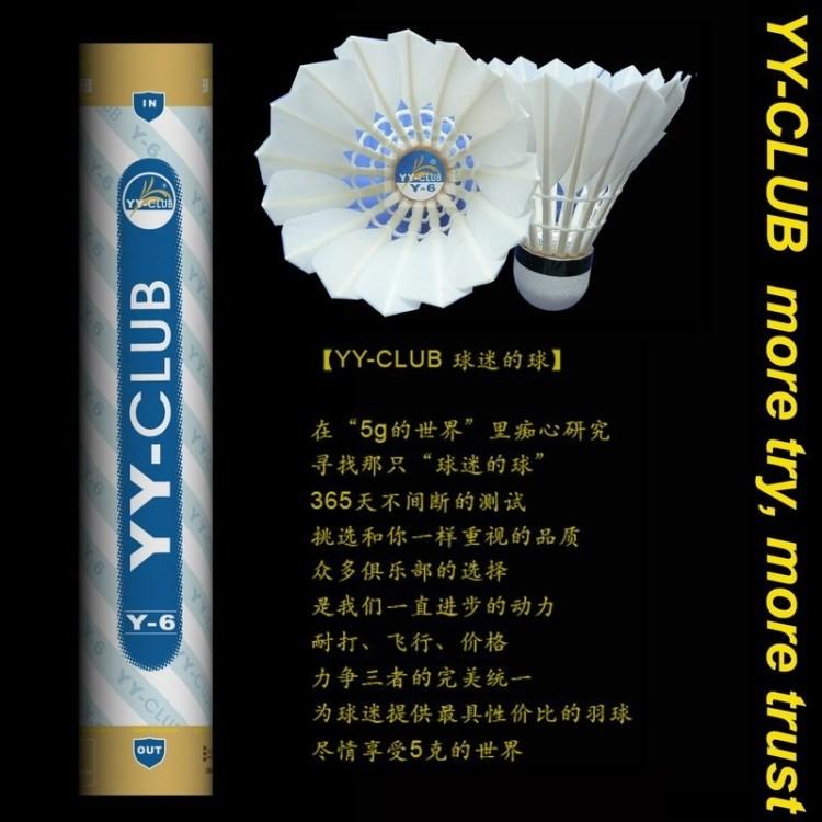 正品CLUB 蓝Y-6 飞行稳定耐打羽毛球 俱乐部用球亚狮龙6号标准