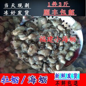 领2元券购买1件3斤 福建小海蛎 鲜活现剥去壳牡蛎新鲜海蛎子非即食冰鲜生蚝肉