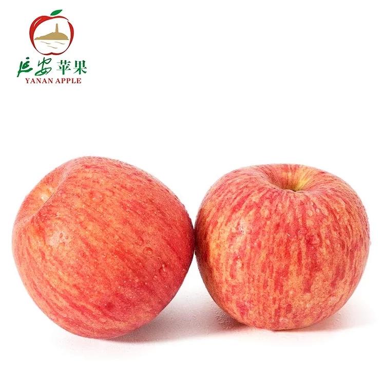 延安红富士苹果特价6斤带箱包邮延安脆甜苹果一整箱(混装)