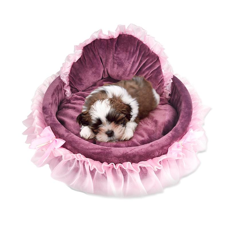 狗窩寵物窩博美泰迪比熊貴賓小型犬吉娃娃幼犬狗床蕾絲可愛公主床