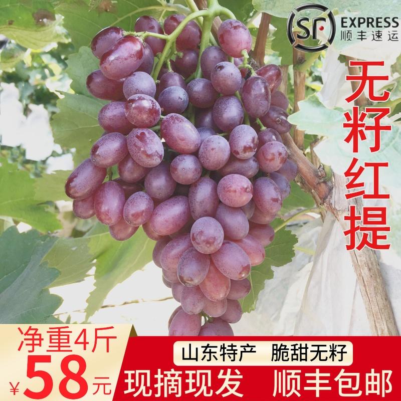 当季水果 新鲜无籽葡萄红提4斤无核红提子小葡萄脆甜孕妇山东特产