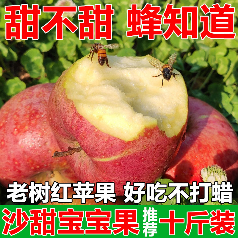 Sand Apple fresh a box of Luochuan Apple flour Shaanxi Qinguan authentic 10 kg old woman baby scraping mud sweet